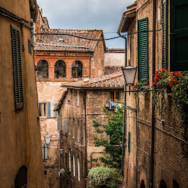 Siena by Mario Horvat - City,  Street & Park  Street Scenes ( old, houses, toscana, italia, windows, italy, siena )