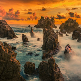 by Mac Evanz - Landscapes Waterscapes