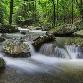 JG-2012-02 by Ross Boyd - Landscapes Waterscapes ( stream, mountains, creek, sc, rocks )