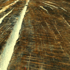Walkway by Leigh Martin - Abstract Macro ( wood brown crack abstract )