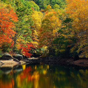 Thorpe Reservoir, Glenville NC by Jonathan Wheeler - Landscapes Forests ( western north carolina, autumn leaves, fall foliage, reflections, thorpe reservoir,  )