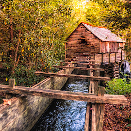 Grist Mill by Cathie Crow - Buildings & Architecture Public & Historical ( water, mills, great smoky mountains, great smoky mountains national park, fall, grist mill, architecture, cades cove )