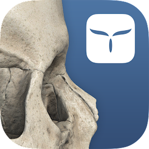 AppSurgeOn - 3D Skull Atlas for Android