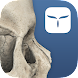 AppSurgeOn - 3D Skull Atlas