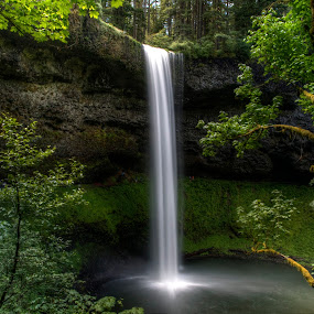 Silver Falls by Chip Bolcik - Nature Up Close Water
