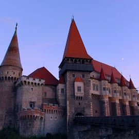 Corvin Castle by Alexandru Lupulescu - Buildings & Architecture Public & Historical ( corvin castle )