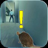 Rat Simulator : Rat