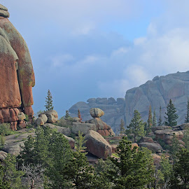 Vedauwoo Granite by Kirby Hornbeck - Landscapes Caves & Formations ( clouds, wyoming, formations, trees, landscapes, rocks )