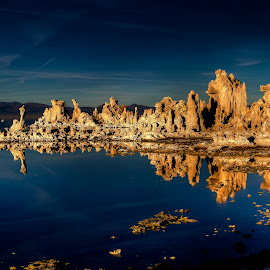Mono Lake Tufa by Lee Molof - Landscapes Waterscapes