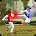 Real Taekwondo Kung Fu Tiger 2017
