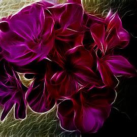 by Alenka Predic - Digital Art Things