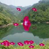 红歌100首,革命歌曲 China Red Songs APK for Ubuntu