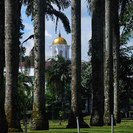 yellow dome by Adjie Tjokrosoedarmo - City,  Street & Park  Historic Districts ( buitenzorg, botanical garden, palace, rafles )