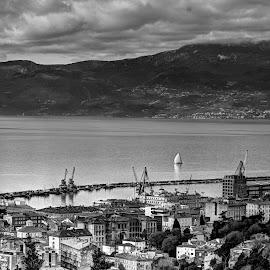 Rijeka, Croatia from above by Ferdo Fulgosi - City,  Street & Park  Vistas ( rijeka, black and white, sea, sails, waterfront, city,  )