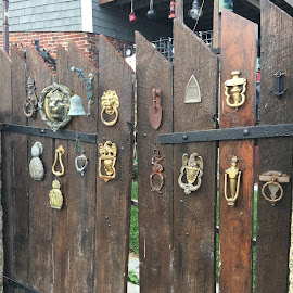Door Knockers on Gates by Kristine Nicholas - Novices Only Objects & Still Life ( doors, fence, old, multiple, antique, gate )