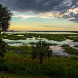 Marshland by Keith Wood - Landscapes Prairies, Meadows & Fields ( beaufort, kewphoto, meadow, marsh, keith wood )