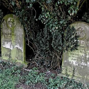 SUF gravestones 09.jpg
