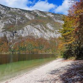 Lake Bohinj 3 by Igor Gruber - Landscapes Beaches
