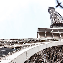 Birds Eiffel View by Rob Taylor - Buildings & Architecture Statues & Monuments ( paris, eiffel tower, tower, eiffel, france, monument,  )