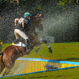 Out of the Water by Mike Watts - Sports & Fitness Other Sports ( water, jumping, cross country, carolina horse park )