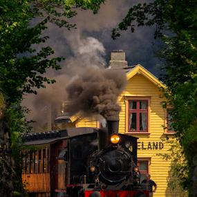 Haukeland Station by Rune Askeland - Transportation Trains ( bergen, steam locomotive, old, railway, haukeland, station, gamle vossebanen, train, norge )