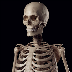 Human Skeleton Reference Guide for Android