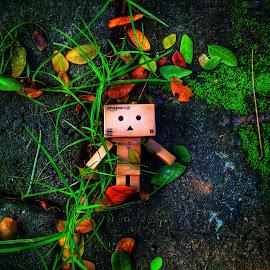 Alone by Saiful Rif'an - Instagram & Mobile iPhone ( danboru, danbo, danboard )