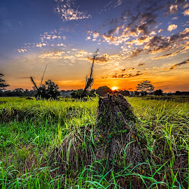 by Gordon Koh - Landscapes Sunsets & Sunrises