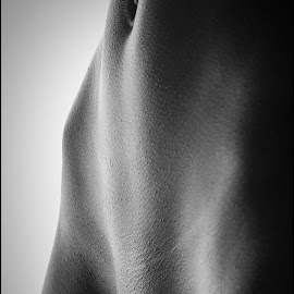 Bodyscape III by Peter DuChene - Nudes & Boudoir Artistic Nude ( body, nude, black and white, art, bodyscape, belly, navel, vulva, bade, female, naked, vagina, belly button, artistic, part, stomach )