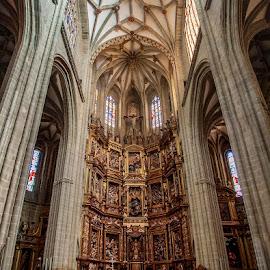 Catedral de Astorga by Jomabesa Jmb - Buildings & Architecture Places of Worship ( iglesias, catedral, leon, españa, astorga,  )