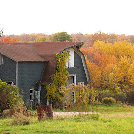 Old barn  by Jessie Dautrich - Buildings & Architecture Other Exteriors ( countryside, old, barn, fall, beauti )
