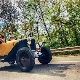 Old Timer Race  by Jiri Cetkovsky - Transportation Automobiles ( car, brno, hill, veteran, old time race )