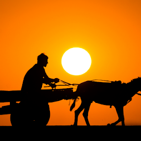 by Awais Mustafa - People Fine Art ( canon eos 60d, silhouette, sunset, sigma 70-200 f2.8, sun )