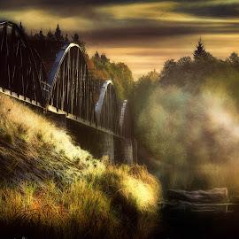 Old railroad bridge by Johan Lennartsson - Buildings & Architecture Bridges & Suspended Structures ( old, railway, vintage, railroad, bridge, morning, mist )