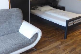 1 Bedroom Apartment 3