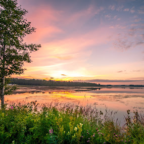 Lovely sunset by Benny Høynes - Landscapes Sunsets & Sunrises ( water, sweden, colourful, tree, grass, sunset, mood factory, color, lighting, moods, colorful, light, bulbs, mood-lites,  )