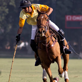 POLO by Yuni  Khan - Sports & Fitness Other Sports ( polo in pakistan, yuni's photography )