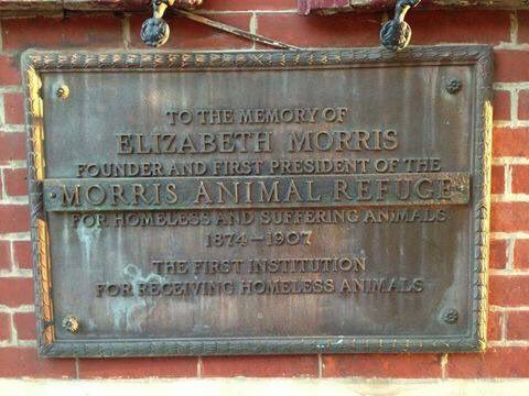 TO THE MEMORY OF  ELIZABETH MORRIS  FOUNDER AND FIRST PRESIDENT OF THE  MORRIS ANIMAL REFUGE  FOR HOMELESS AND SUFFERING ANIMALS  1874-1907  THE FIRST INSTITUTION  FOR RECEIVING HOMELESS ANIMALS  ...