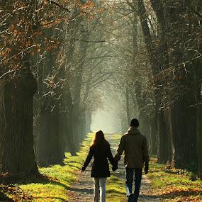 Zahrádky u České Lípy by Irena Brozova - Landscapes Forests (  )