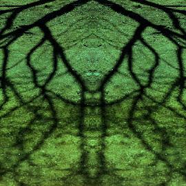 Varjo-olio by Niina Hakkarainen - Abstract Patterns