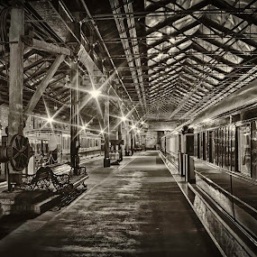 Station by Josh Hilton - Digital Art Places ( greyscale, railway, vintage, station, train, antique )