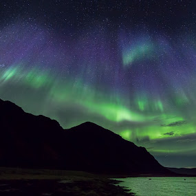 Aurora blue and green by Benny Høynes - Landscapes Starscapes ( water, winter, sky, blue, green, aurora borealis, sea, norway,  )