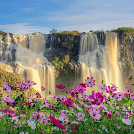Waterfall by Trang Võ - Landscapes Starscapes ( water, tree, fog, waterfall, flowers )