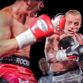 Whack! by Kim Johnson - Sports & Fitness Boxing ( punch, strike, ouch, combat, boxers, boxing )