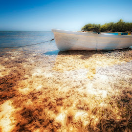 Adrift by Heather Allen - Landscapes Waterscapes (  )