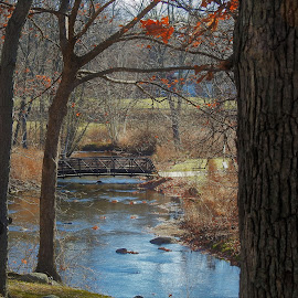 Bridge Over Calm Waters by Kathy Woods Booth - City,  Street & Park  City Parks ( calm, peaceful, waterscape, autumn, brook, calmness, bridge )