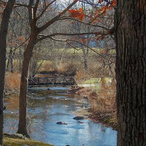 Bridge Over Calm Waters by Kathy Woods Booth - City,  Street & Park  City Parks ( calm, peaceful, waterscape, autumn, brook, calmness, bridge )