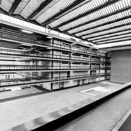 Bell Labs by Christopher Ludwig - Buildings & Architecture Other Interior ( building, bellworks, perspective, lines, architecture, blackwhite )