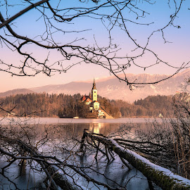 Lake Bled by Joyce Chang - Landscapes Travel ( winter, framing, church, slovenia, tree branches, lake bled )