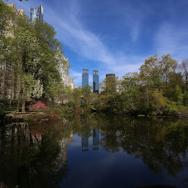 New York City In Spring by Victor Mirontschuk - City,  Street & Park  City Parks ( places, nyc, morning, central park, spring )